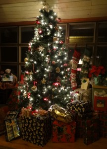 Our Christmas tree December 2012